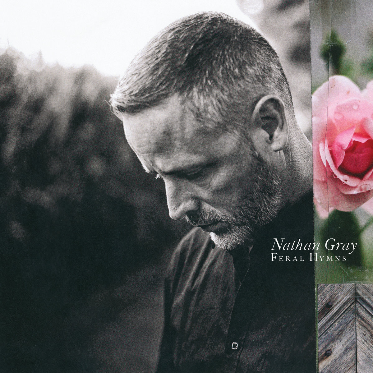 Nathan Gray Feral hymns