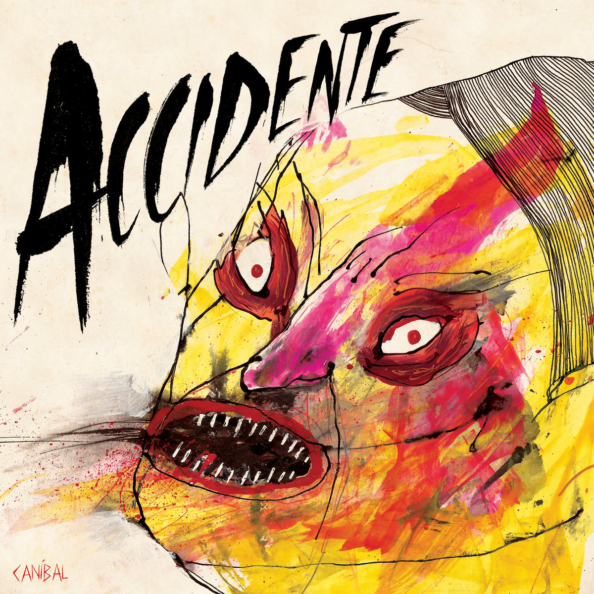accidente canival cover