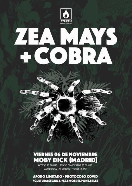 Zea Mays + Cobra